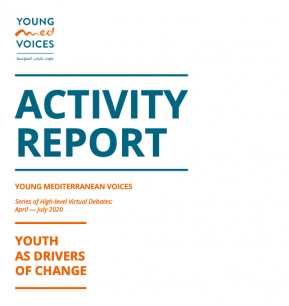 Activity Report - Youth as drivers of change